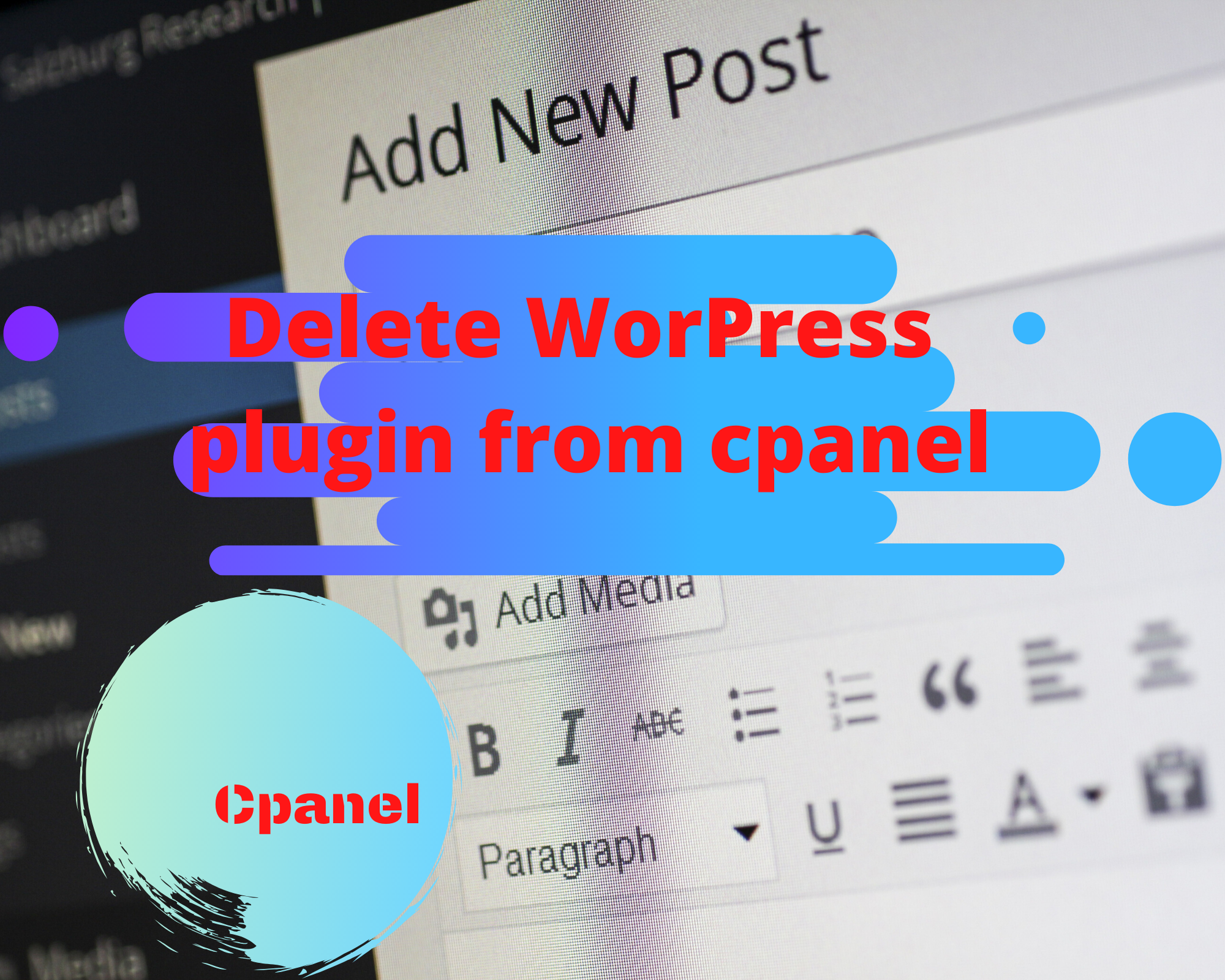 delete worpress plugin from cpanel