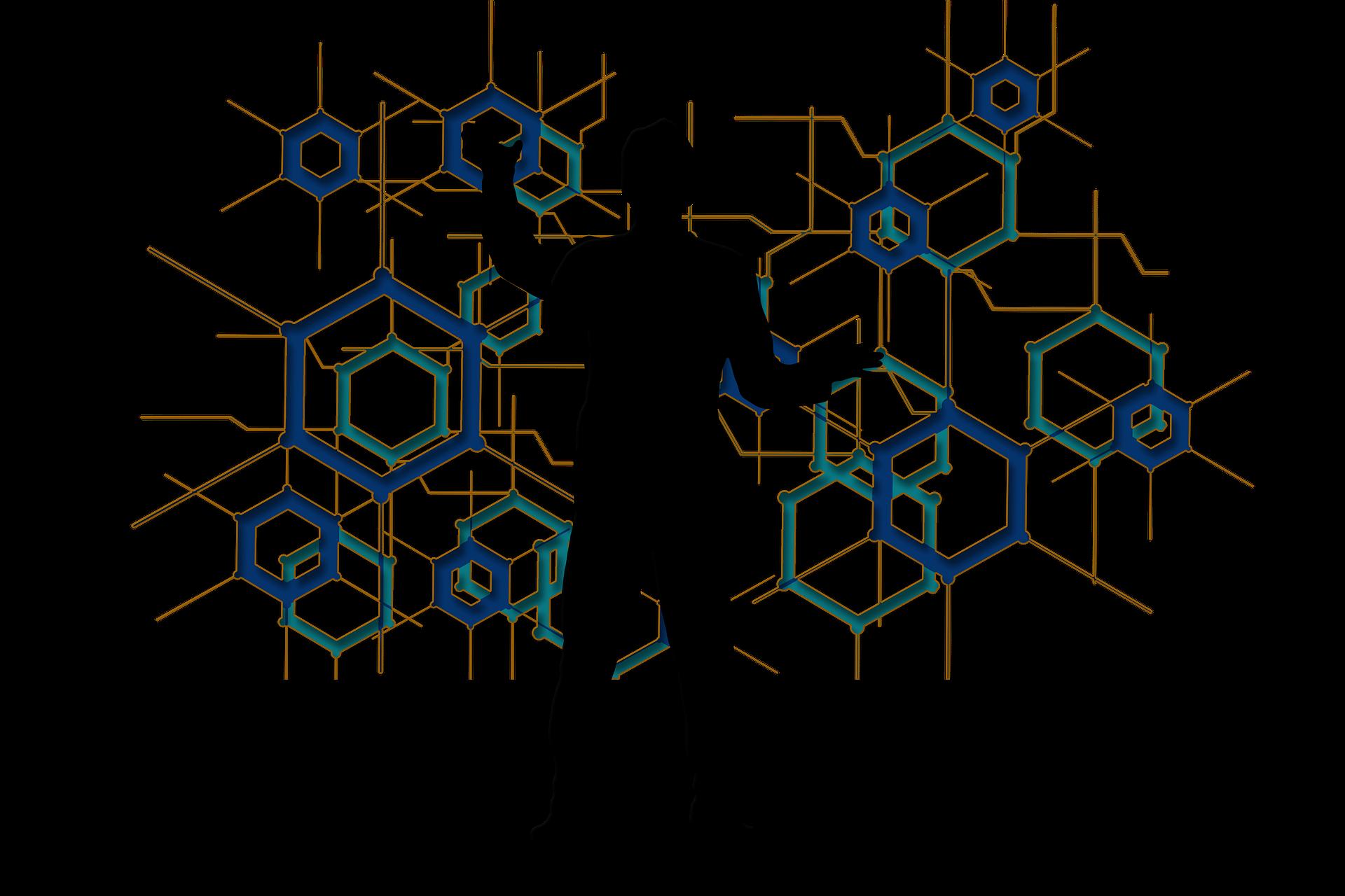 structure de la base des données